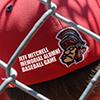 Memorial Alumni Baseball