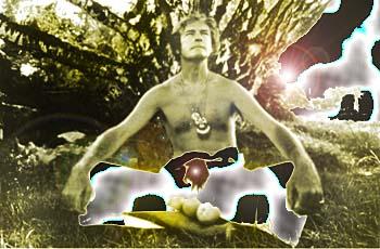 http://www.metroactive.com/papers/metro/07.03.97/gifs/learys-dead2-9727.jpg